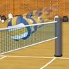 Spike the Volleyballs - iPhoneアプリ