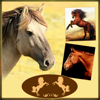 Joachim Bruns - Horses - Wallpapers + Add Text artwork