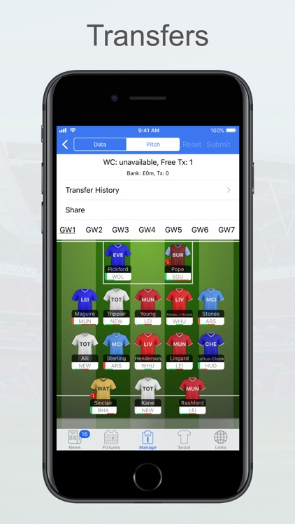 Fantasy Football Manager, Lite