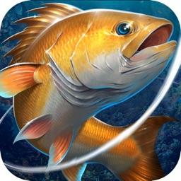 Fishing:Daily Wild Catch