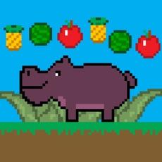 Activities of Fruity Hippo