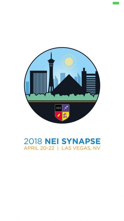 2018 NEI Synapse