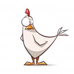 Safe Chicken - Sicheres Huhn