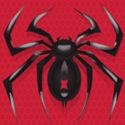 Spider Solitaire: Card Game icon