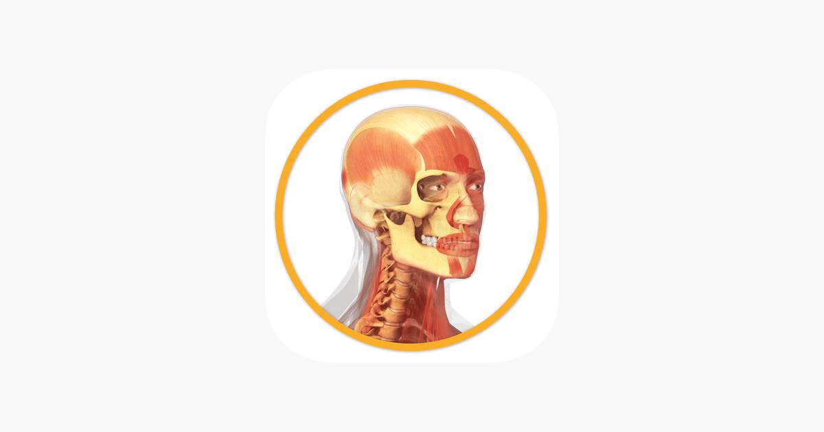 Miniatlas Anatomía en App Store