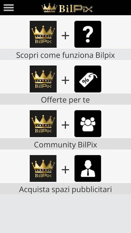 BilPix screenshot-4