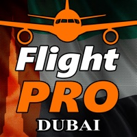 Codes for Pro Flight Simulator Dubai 4K Hack