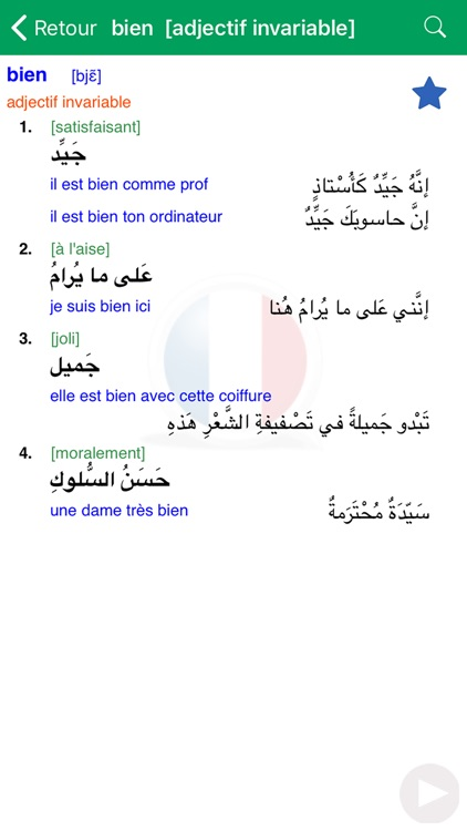Dictionnaire d'arabe Larousse screenshot-3