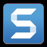 TechSmith Snagit 2018