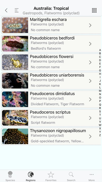 Nudis screenshot-3