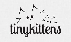 TinyKittens - Rescue Kitten TV