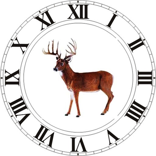 Best Hunting Times