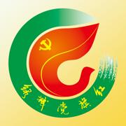 绿城党旗红