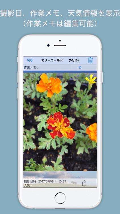 Photo Manager Plus Garden