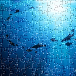 Discovery Under the Sea - Jigsaw Puzzles HD