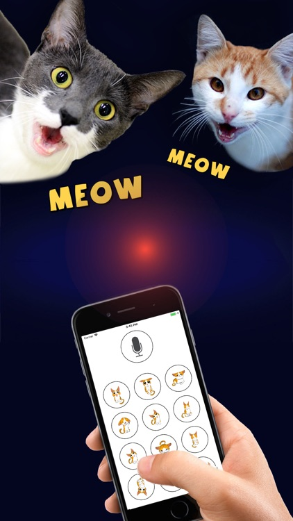 Cat Translator Deluxe