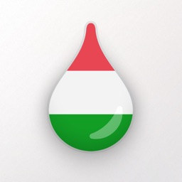 Learn Hungarian language & words with Drops