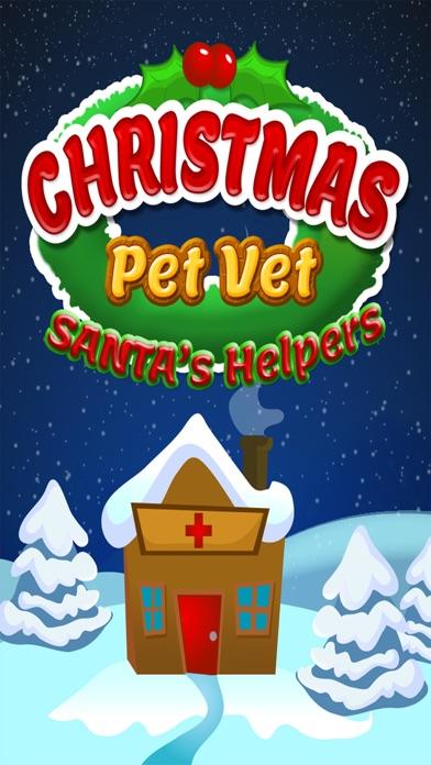 Christmas Pet Vet Santa Doctor