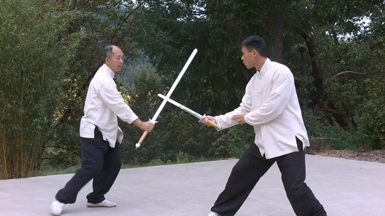 Tai Chi Sword for Beginners screenshot-3