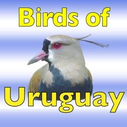 The Birds of Uruguay