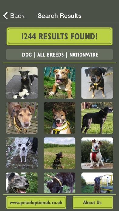 Pet Adoption UK screenshot three