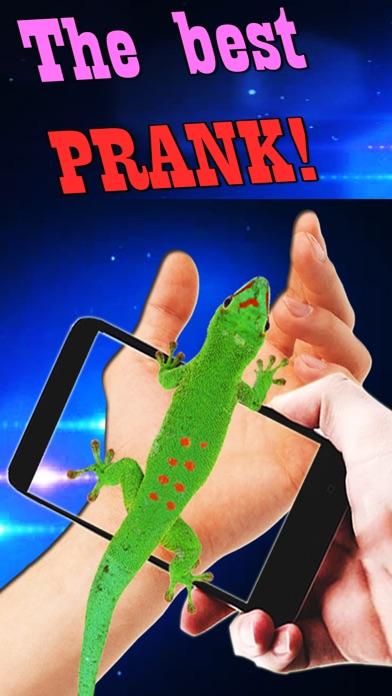 Reptil In Foto: Schlange und Eidechse auf der HandScreenshot von 2