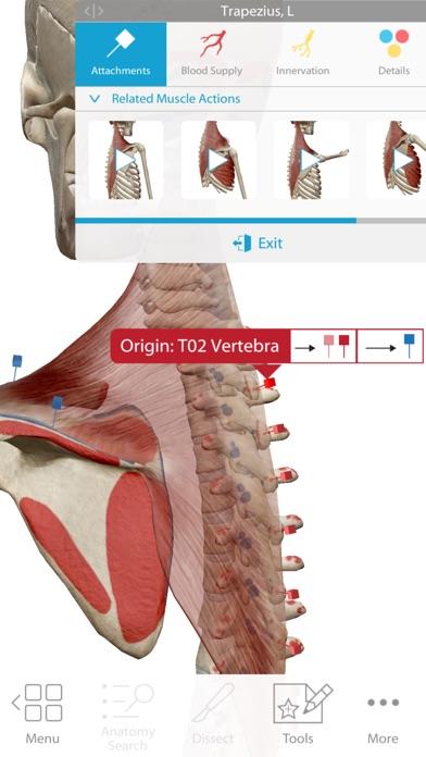 Screenshot of Human Anatomy Atlas 2018 App