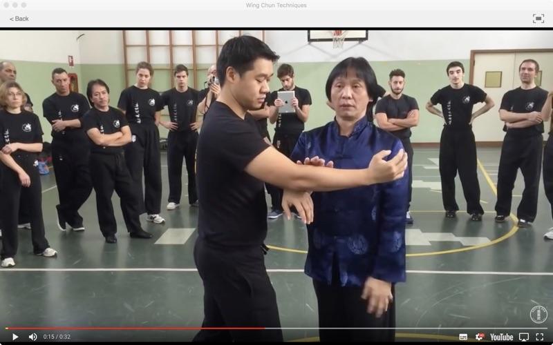 Wing Chun Techniques screenshot 4