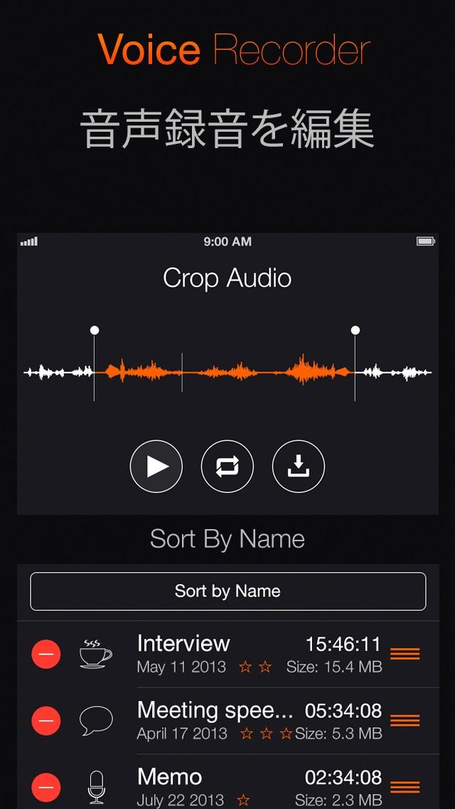 ボイスレコーダー: オーディオ録音 screenshot1