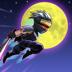 19.Ninja Shadow Fight