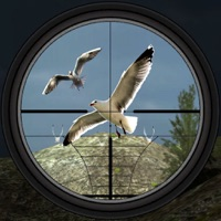 Codes for Birds Hunting - Clay Hunt Pro Hack