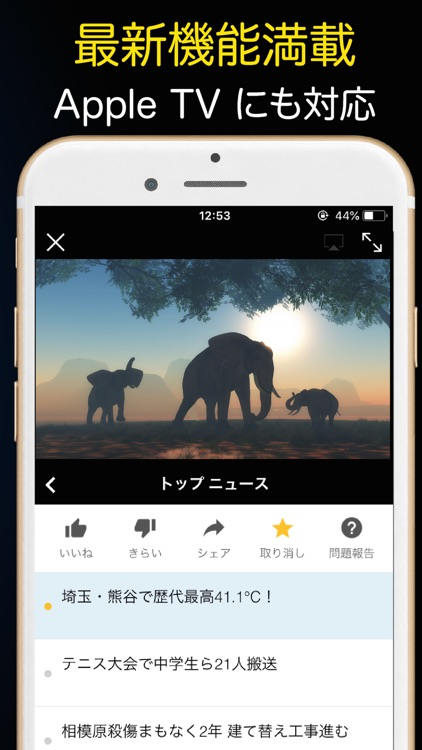テレビ視聴とネット動画が見放題:ニュース&アニメ screenshot-4