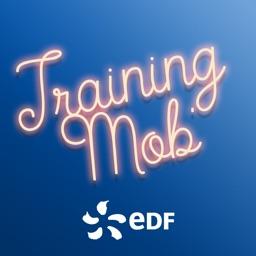 Training Mob