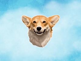 Smiley Corgi Dog Stickers