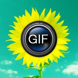 Animated GIF Album free