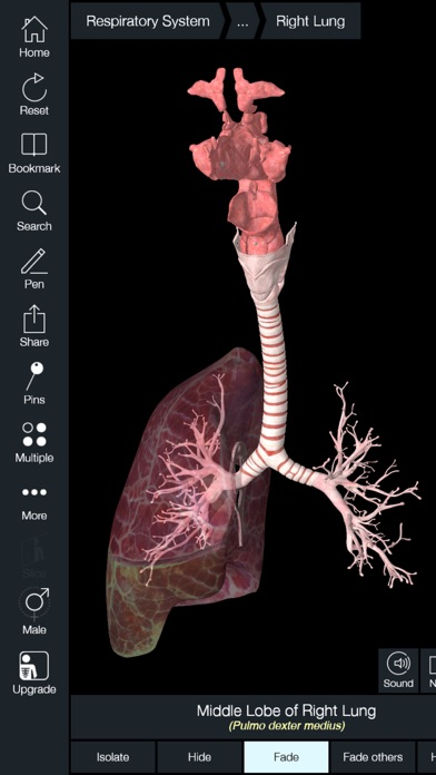 Essential Anatomy 5 - App Download - Android Apk App Store