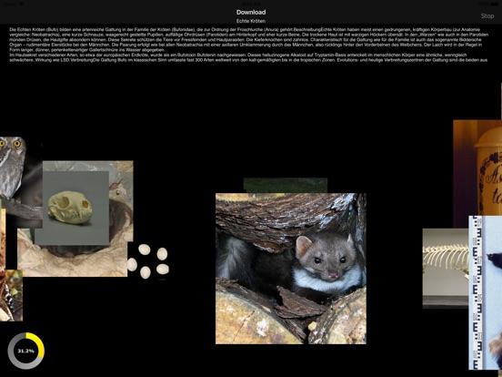 Animals 2.0 screenshot 9