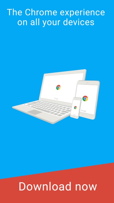 Google Chrome app image