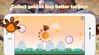 Thanksgiving Jumping Turkey screenshot 4