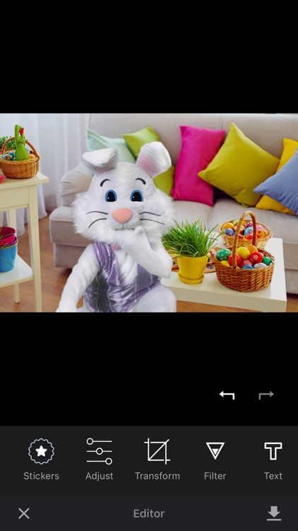 Catch the Easter Bunny screenshot-3