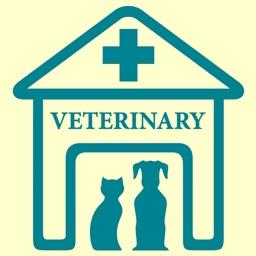 Veterinary Medicine Practice