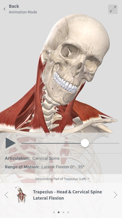 Complete Anatomy For Iphone By 3d4medical Llc