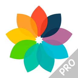 Juicy Colors Pro