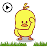 Hoang Trong - Animated Cute Chicken Sticker  artwork