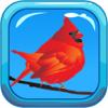 Vogel geluiden