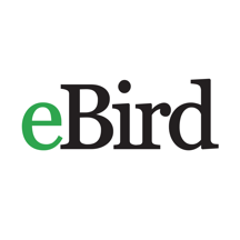 eBird by Cornell Lab of Ornithology