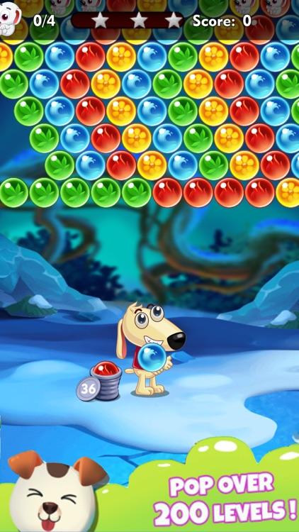 Dog Bubble