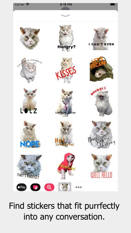 Pompous Albert - Cat Stickers