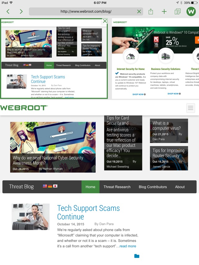 Webroot SecureWeb Browser Screenshot