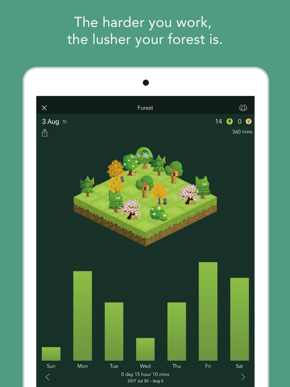 Image of Forest - Stay focused for iPad